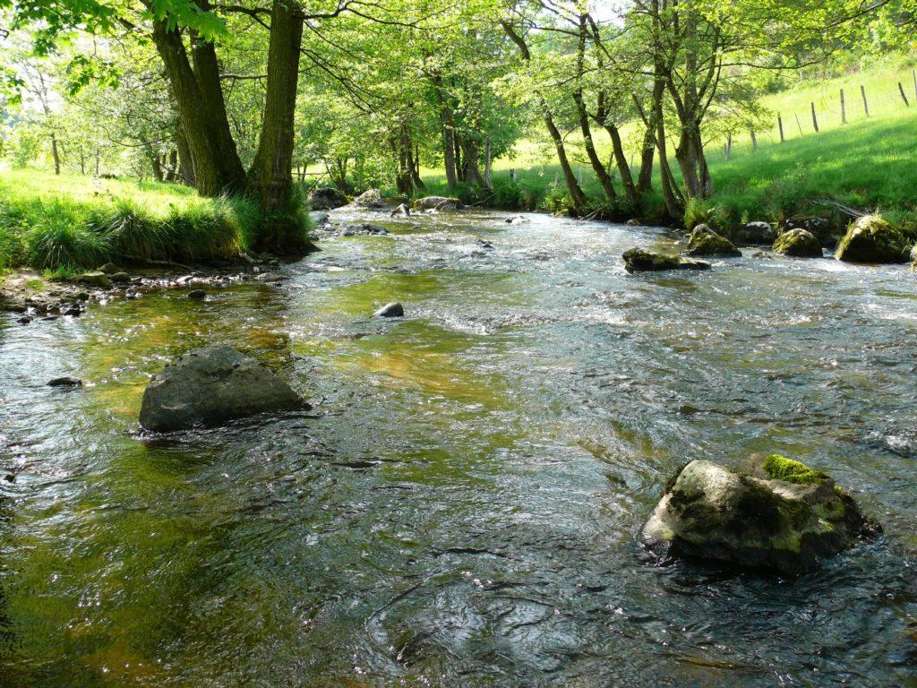 Rivière la Semène à Saint-Romain-Lachalm